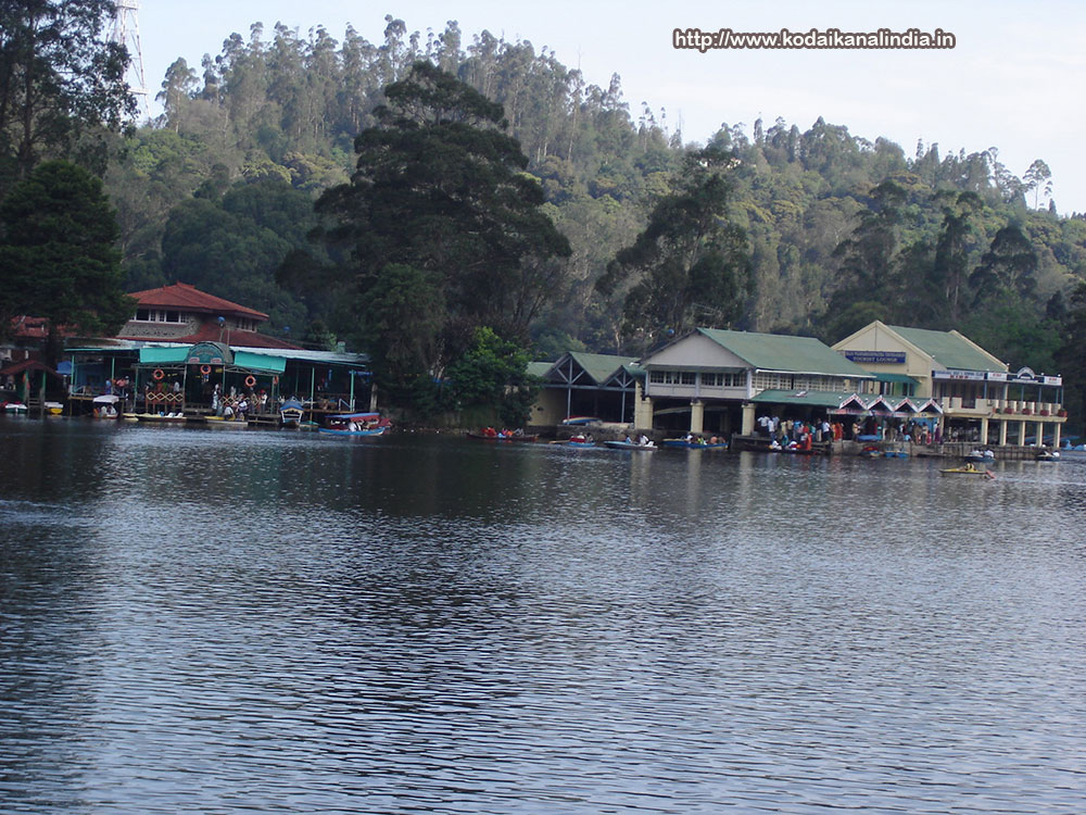 Kodaikanal  Star Hotels List